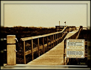 Boardwalk to beach on South Padre Island | by Sheree (Here intermittently)