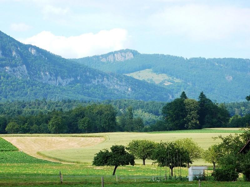 View towards Jura from Feldbrunnen