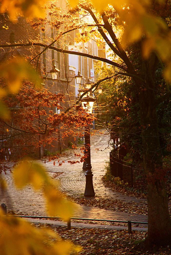 lantaarns in de herfst autumn lanterns singel utrecht flickr