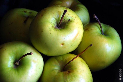 Apples | by DeusXFlorida (10,211,658 views) - thanks guys!