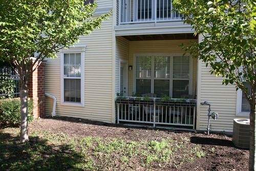 Apartment Finder Arlington Tx Apartment Rentals Arlington Tx