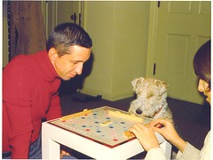 scrabble dog | by Contra Costa Times