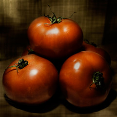 Tomatoes | by Telzey