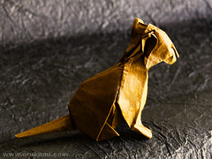 David Brill Origami Seated Cat | by Himanshu (Mumbai, India)