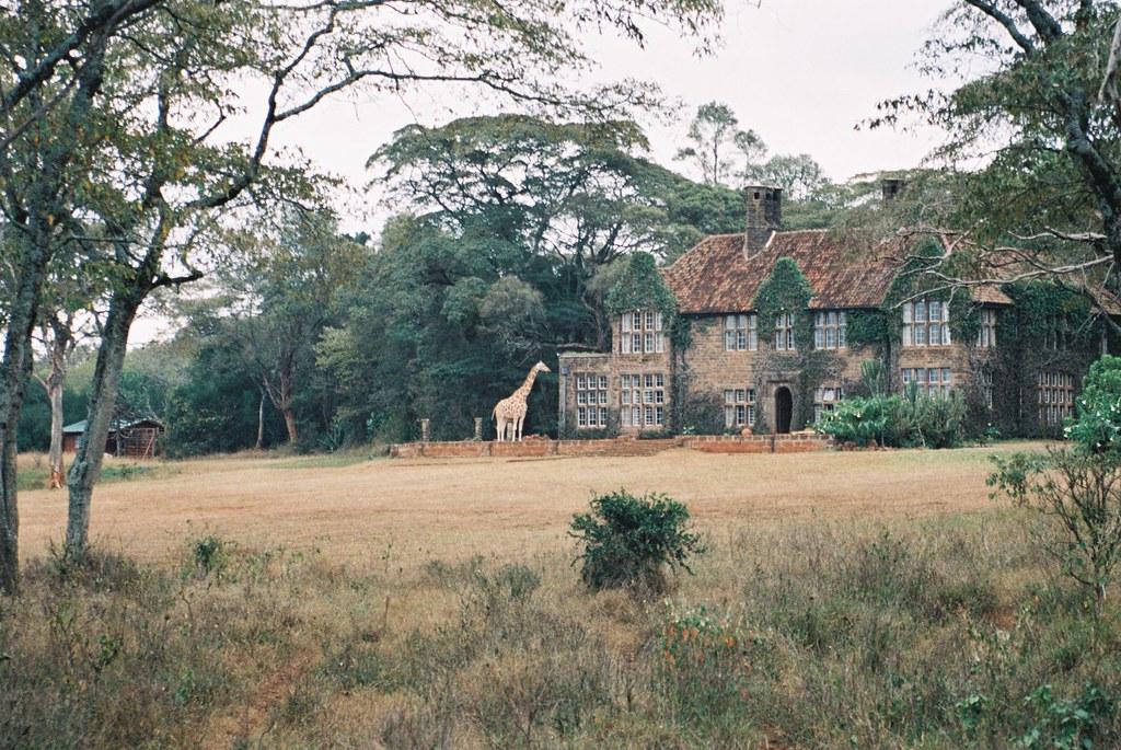 Langata, nairobi dam estate, 1/4acre ideal for flats, shs 65 ...
