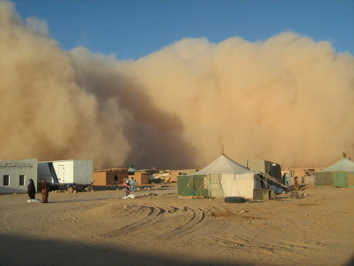 Dust storm, camps, 9 October 2008 | by Western Sahara Project