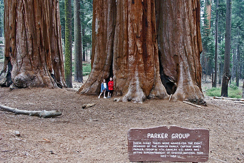 Sequoia National Park - Parker Goup | by Kimba2007