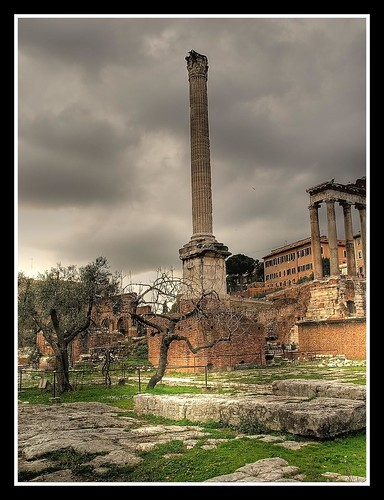 The Forum (Roma) | by losgor 
