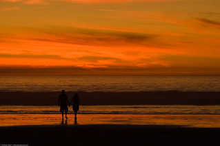 couple-hold-hands-in-silhouette-at-sunset-16nov2008 | by mikebaird