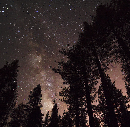 Holcomb Valley Stars Trees | by Tom Lowe @ Timescapes