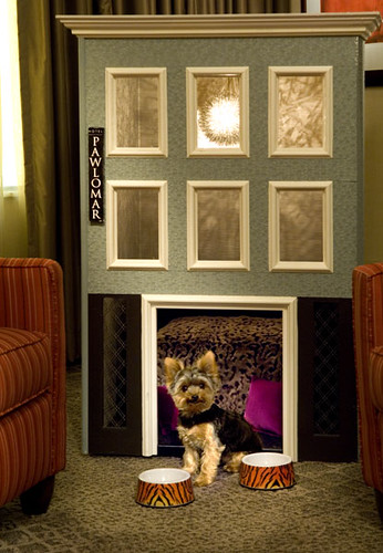 San Francisco Pet Friendly Hotel Pictures Hotel Palomar Flickr