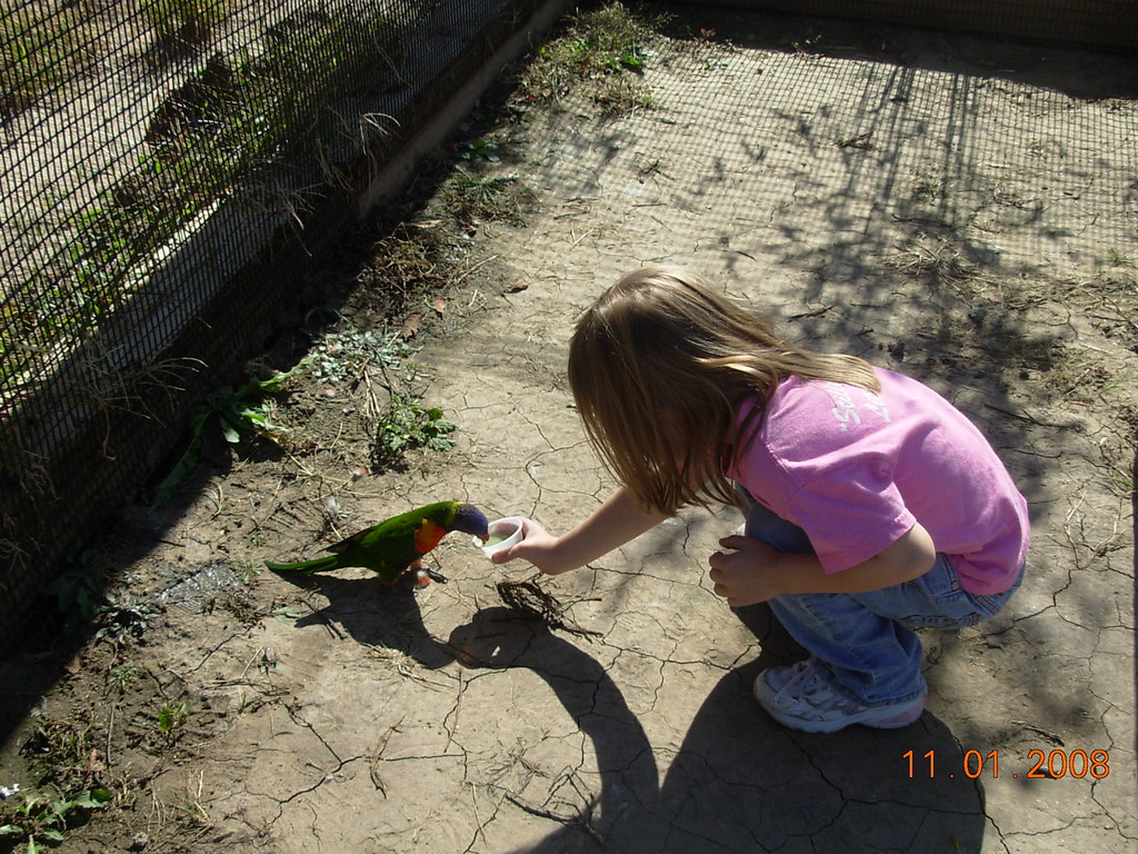 Tanganyika Wildlife Park 11/08   Hope gave up and decided to…   Flickr