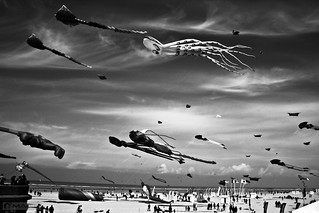 Kites | by - FREDERIC MARS -