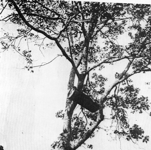 A beehive | by Southern Kikuyu before 1903