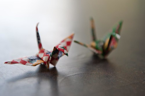 origami of flight | by skinnydiver