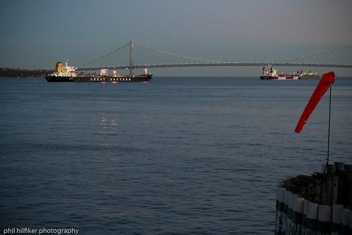Staten Island Phil