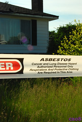 Asbestos building 169/365 | by Carol Browne