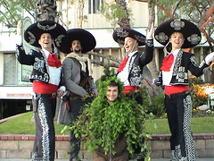 three amigos el guapo and the singing bush by wagadog