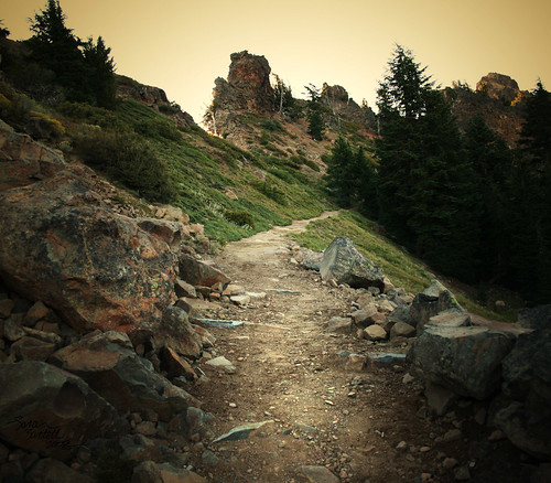 Trail to the Top of the World | by Little Lioness