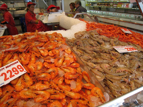 an introduction to the various species of shrimps Freshwater shrimps occupy various types of habitats including lakes, rivers,   trade due to their attractive color pattern (caridina), introduction of invasive fishes ,.