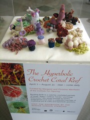 the hyperbolic crochet coral reef | by boodely