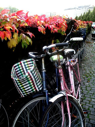 Autumn Bike Love | by velomama