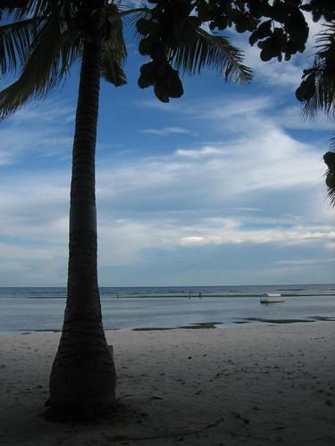 Bohol Beach Club Contact Number