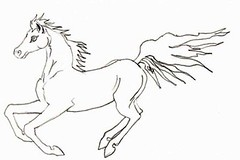 Running Arabian Horse Coloring Book Page  For my friend Hor  Flickr