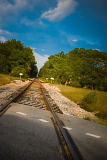 tracks | by sarahtharpe