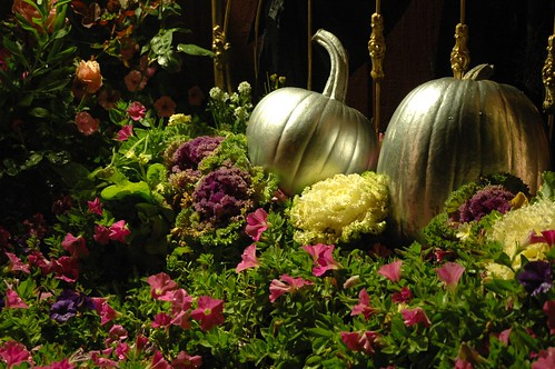 Cinderella's Silver Halloween PUMPKINS in a Bed of Pink Flowers and decorative cabbage, Roses, brass bed frame, Mill Rose Inn, Half Moon Bay, California, USA | by Wonderlane