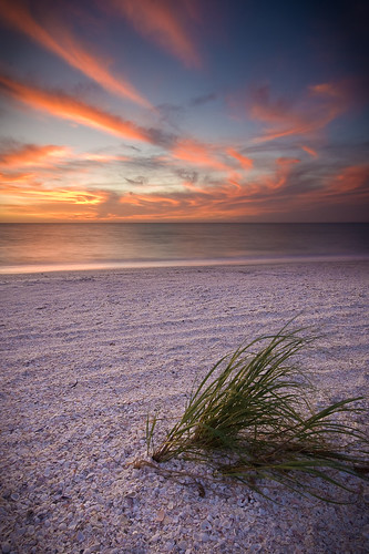 Grass on Bonita Beach at Sunset (2) | by AaronBBrown