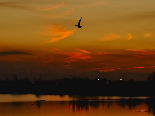 Afterglow -- ( ISO = 1800 ) | by Mc Shutter
