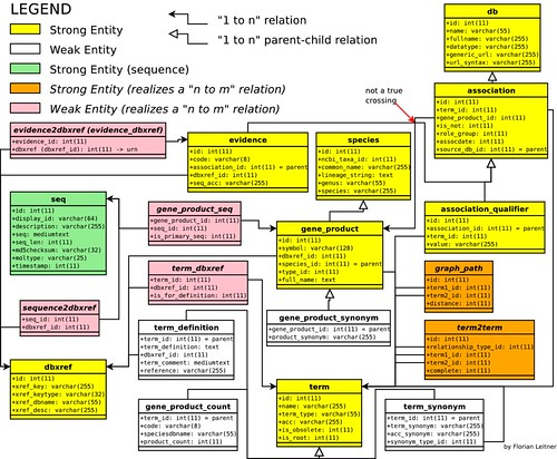 Gene Ontology Entity Relationship Diagram By Florian Leitn Flickr