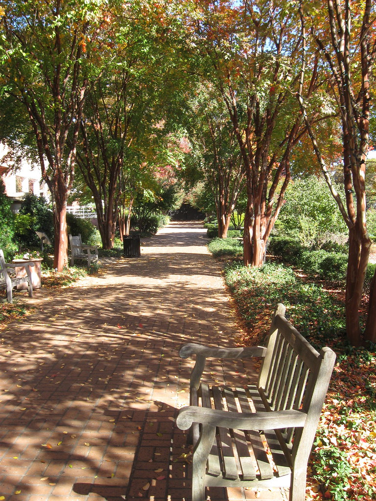 Piedmont Park and Atlanta Botanical Gardens | From my trip t… | Flickr
