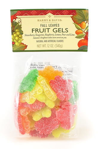 Fall Leaves Fruit Gels | by cybele-
