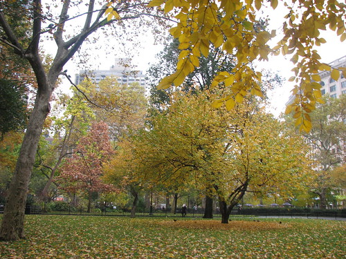 Madison Square Park | by jen_rab