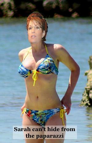 Sarah palin usa bikini
