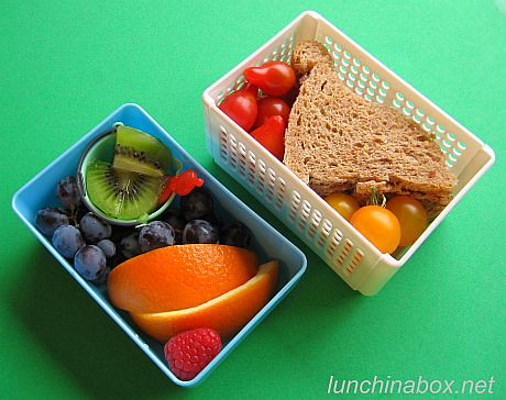 Sandwich and fruit lunch for preschooler | by Biggie*