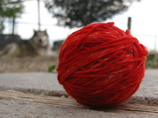 Yarn | by kafski
