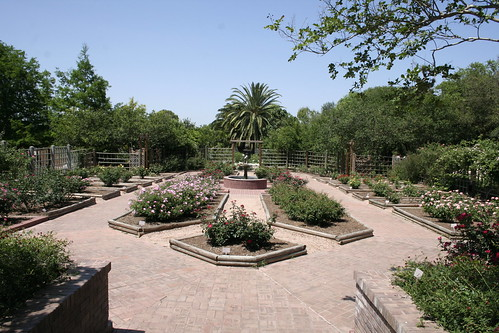 SA botanical gardens | by Amy the Nurse