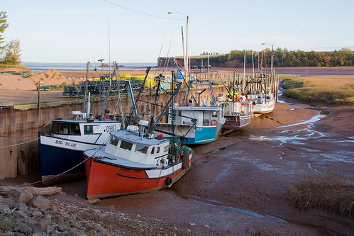 Low Tide at Bay of Fundy | by laszlofromhalifax