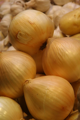 Onion | by Alexandre Dulaunoy