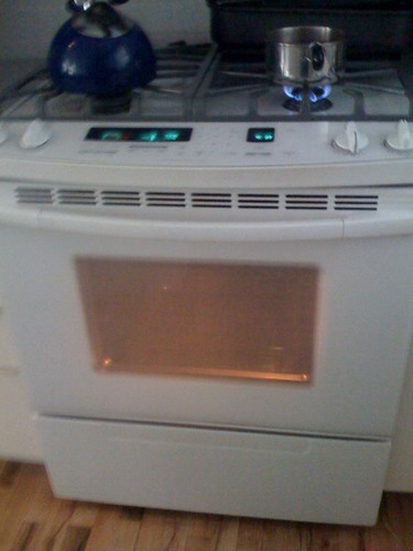 Rolling the dice with this self cleaning oven feature yes flickr - Clean oven tray less minute ...