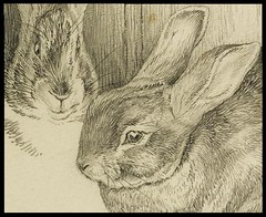 Two Bunnies (detail) | by peacay