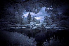 Japanese garden in Seattle (infrared). | by coulombic