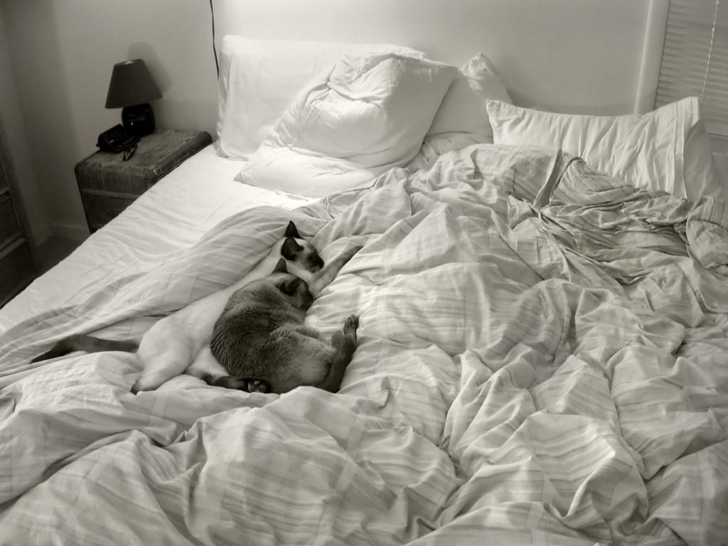 unmade bed side view. An Unmade Bed: Perfect For Napping | By Robert Couse-Baker Bed Side View E
