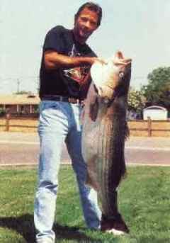 Modesto fish