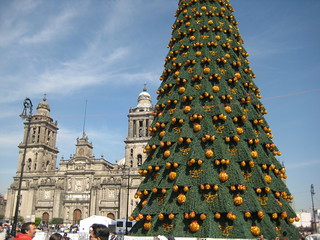 árbol de navidad y catedral metropolitana centro zócalo / christmas tree and metropolitan chatedral at mexico's city downtown | by Abraham P V