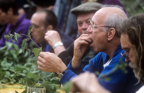World Nettle Eating Challenge-UK | by Jean-Marc Teychenne