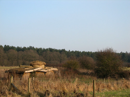 Tank in the field | by abrinsky